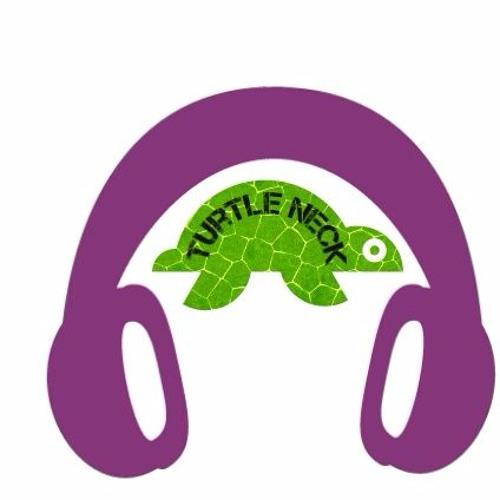 turtle neck's avatar