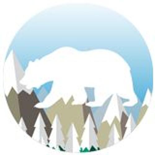 snow forest's avatar