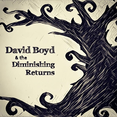 David Boyd & the Diminishing Returns's avatar