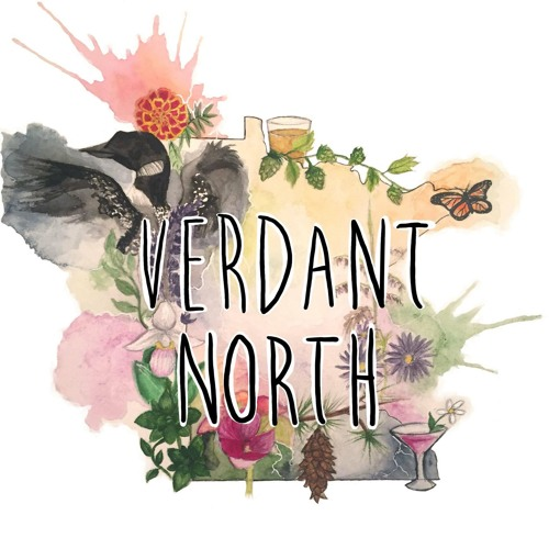 Verdant North's avatar