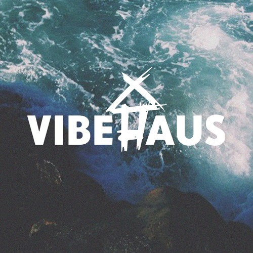 VibeHaus's avatar