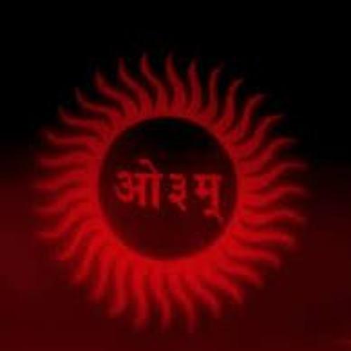 Arya Samaj's avatar