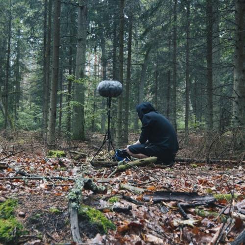Soundholder's avatar