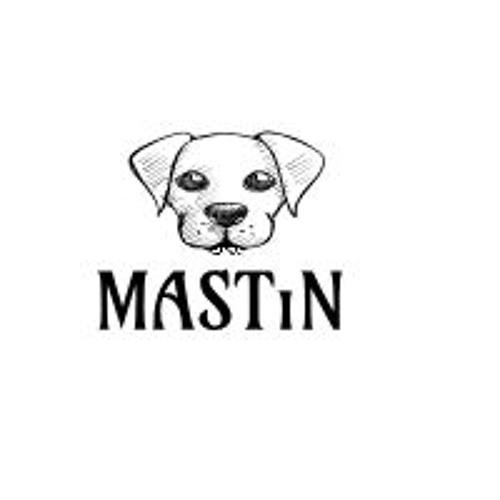 MASTIN's avatar