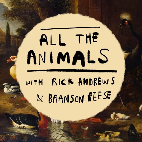 All The Animals Podcast's avatar