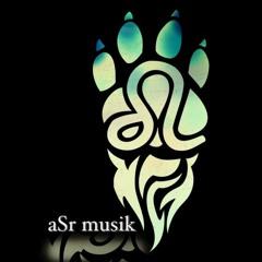 aSr musik