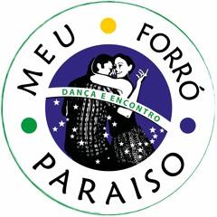 Trio Nordestino & Trio Virgulino  - Forró e Paixão