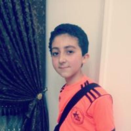 Abdulrahman Elnozahy's avatar