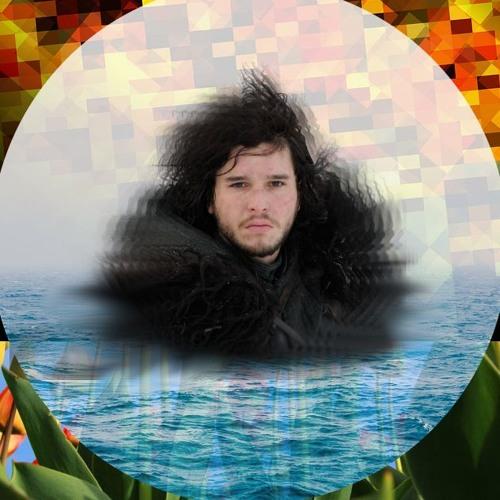 wokejonsnow's avatar