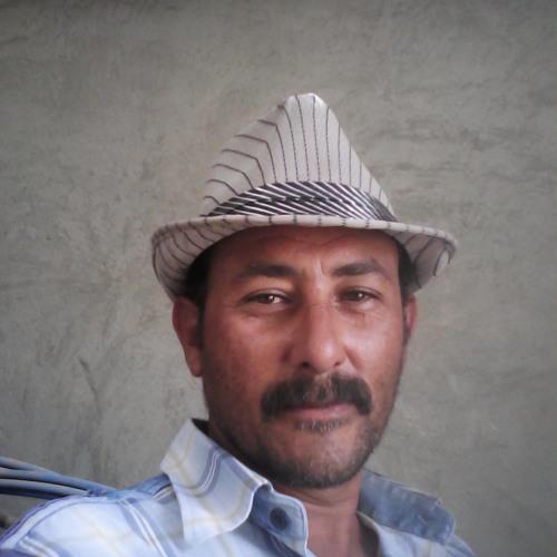 Tamerseif Abou Zeid's avatar