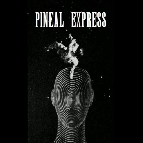Pineal Express's avatar
