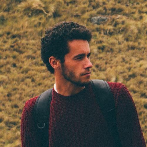 Marin Stefani's avatar