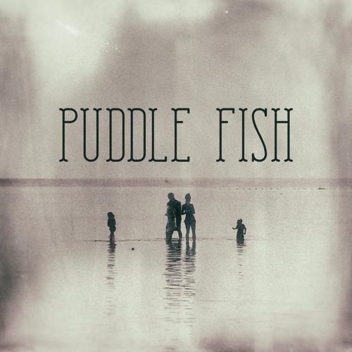 Puddle Fish's avatar
