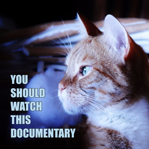 You Should Watch This Documentary's avatar