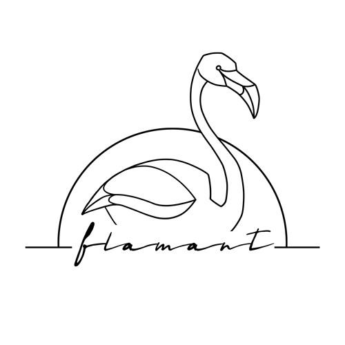 Flamant's avatar
