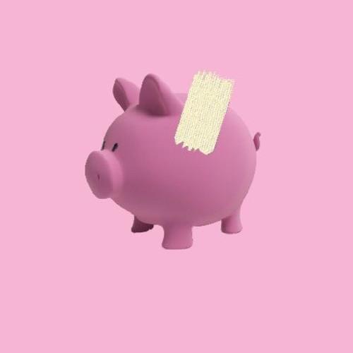 RudeRaptor Capital's avatar
