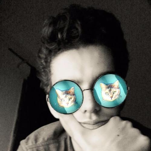 Daniel Ben Shimol's avatar