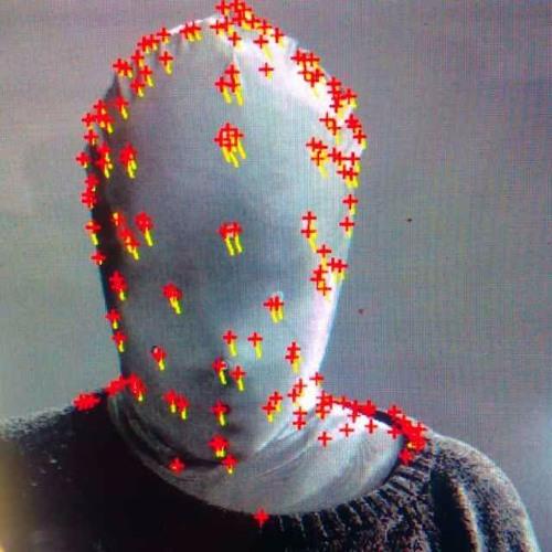 Fresh Crisis's avatar