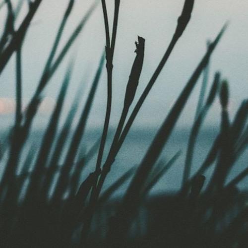 Meditation med fokus på sociale relationer