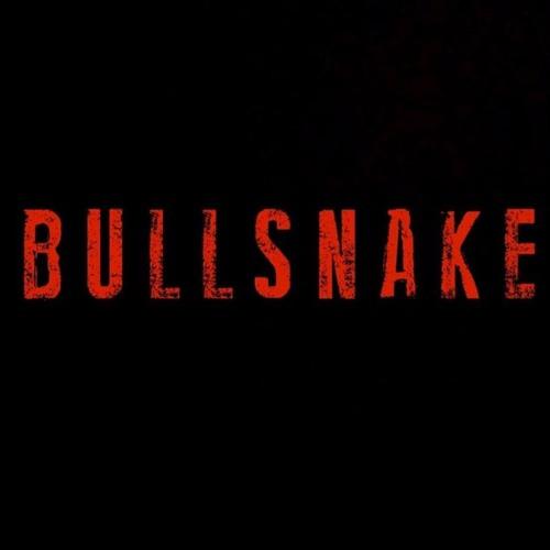BULLSNAKE's avatar