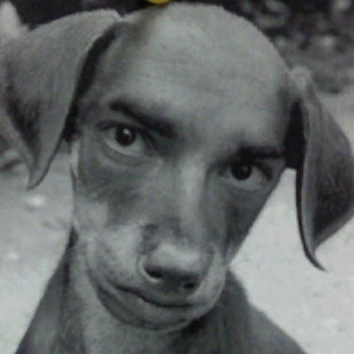 Ron Nicodemus's avatar