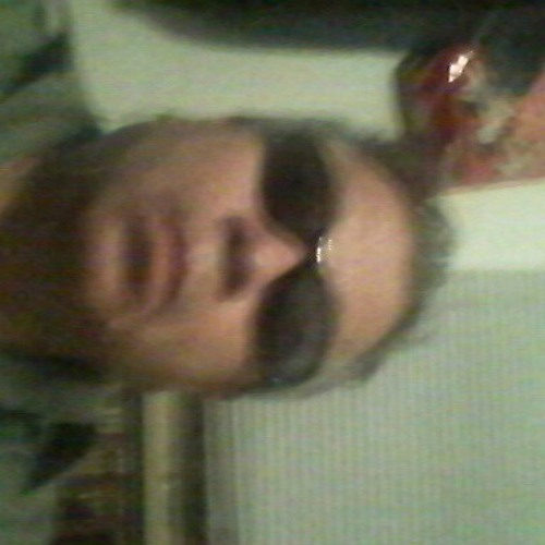 ozzy's avatar