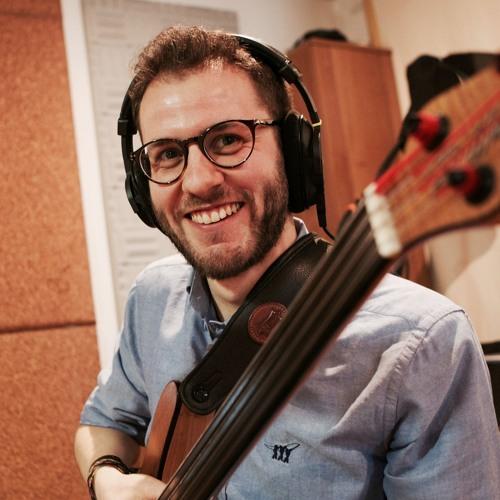 Sebastian Piovesan's avatar