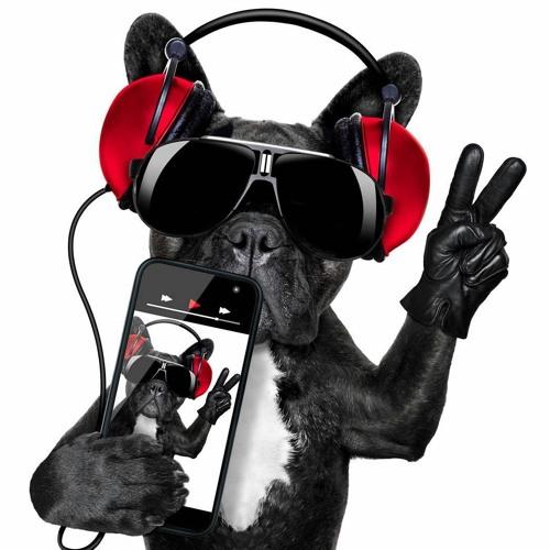 Music Reloaded's avatar