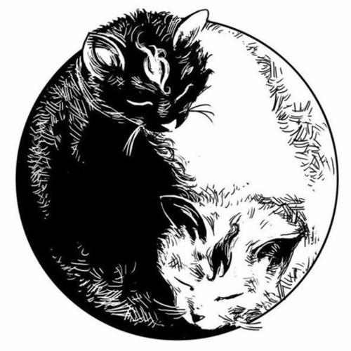 Deewave's avatar