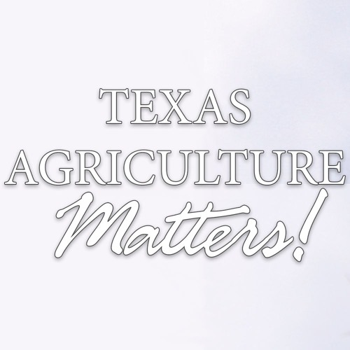 Texas Department of Agriculture's avatar