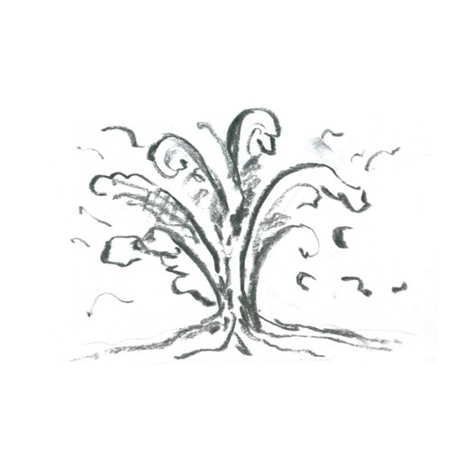 javiera barreau's avatar
