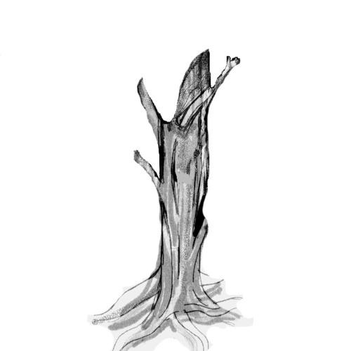 Autumn City Hymnal's avatar