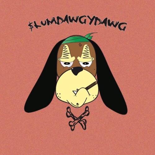 $$$LUMDAWGTOM's avatar
