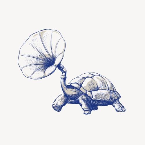Tortuga's avatar