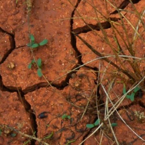 Ground's avatar