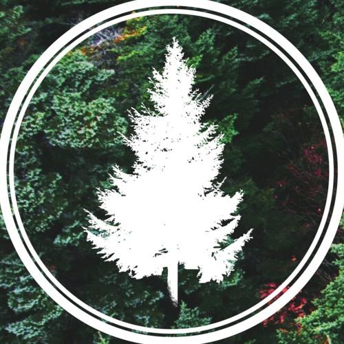 Coniferous Moves's avatar