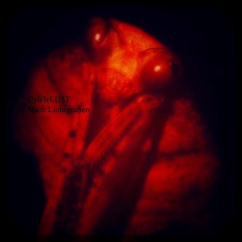 Cyb3rLU5T's avatar