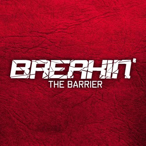Breakin'TheBarrierTV's avatar