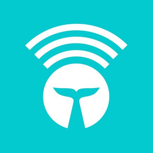 Whalar's avatar