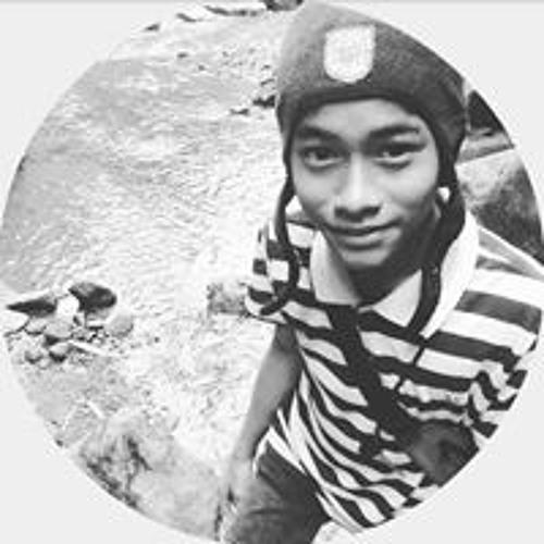 Muhammad Augustiyant's avatar