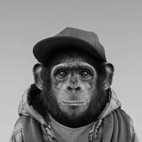 monkey can play's avatar