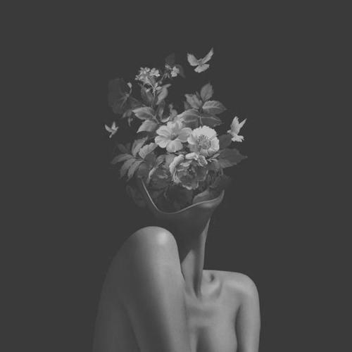 Last Flowers's avatar