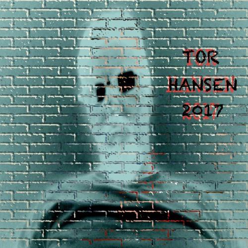 Tor Hansen's avatar