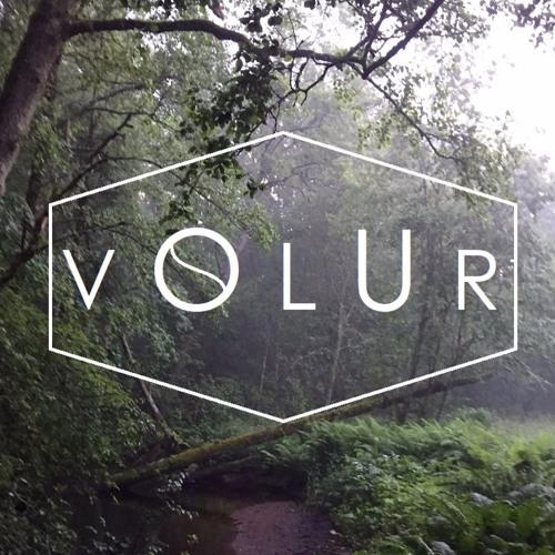 VOLUR's avatar