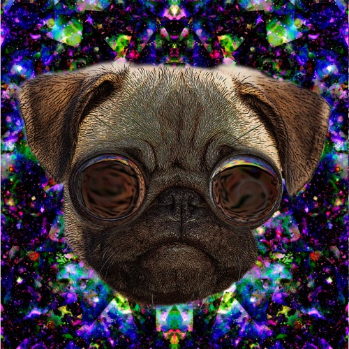 Interdimensional Dog's avatar