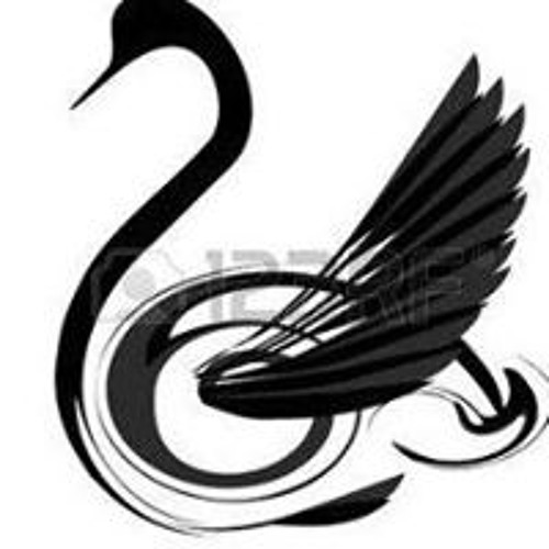 Cygne Noir's avatar