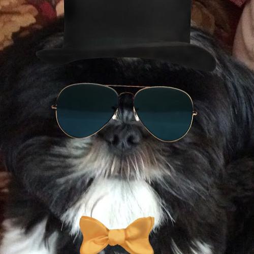 coletroll's avatar