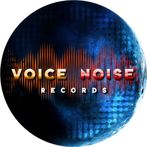 VoiceNoise Records's avatar