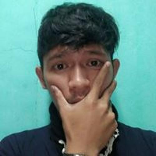Hasti Robani's avatar