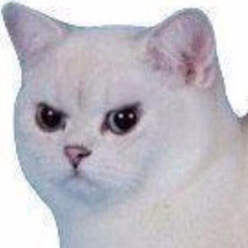 User 103820998's avatar
